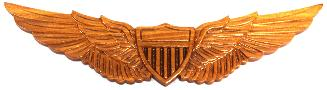 Arny Aviatoir Wings Wall Plaque